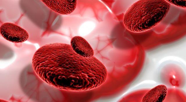 Diagnostyka anemii z krwi